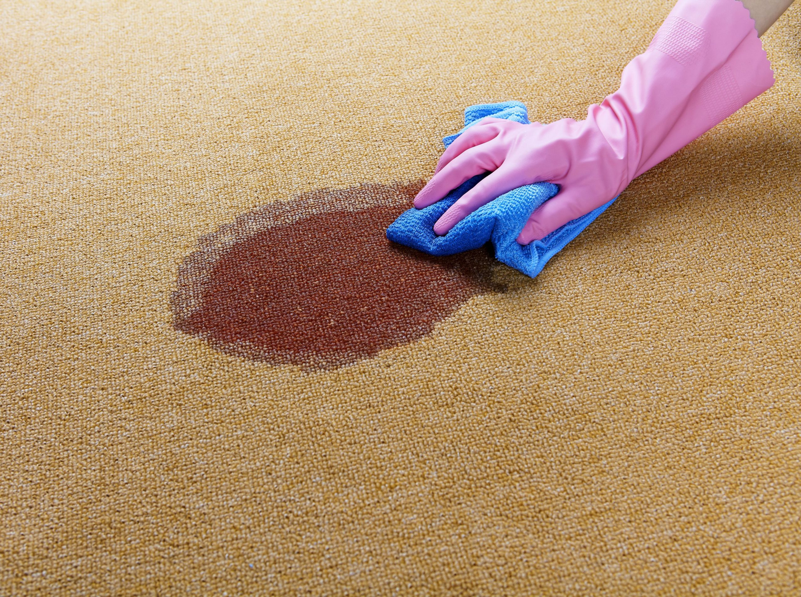 Carpet stains - our tips for removing them at Tech Floors